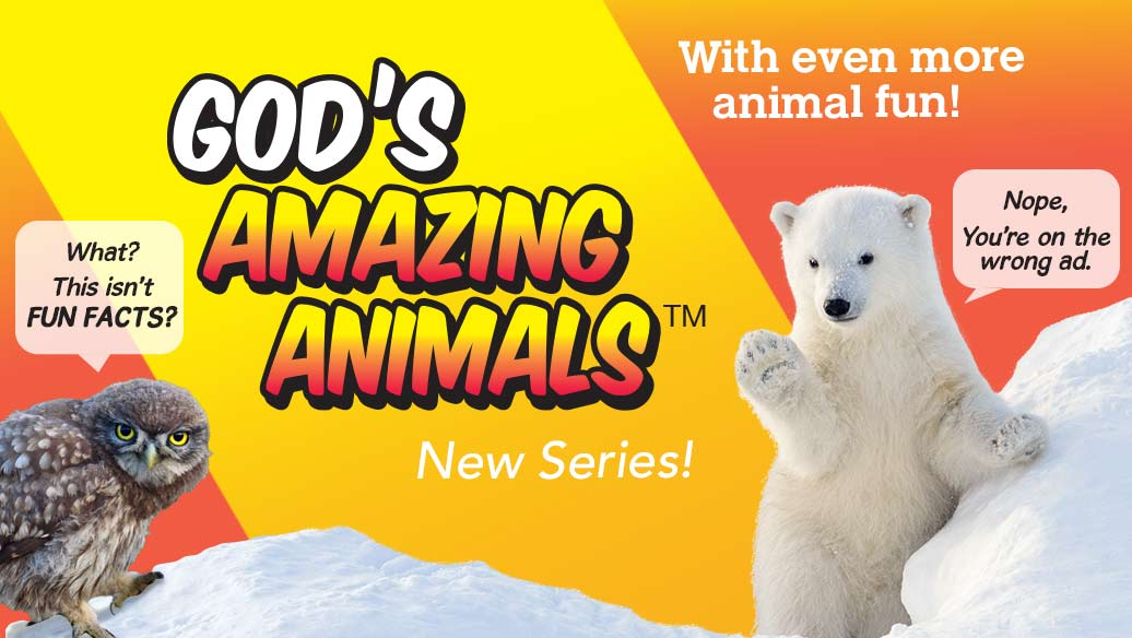 God's Amazing Animals Fun Facts series image slide