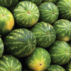 How to choose watermelons image